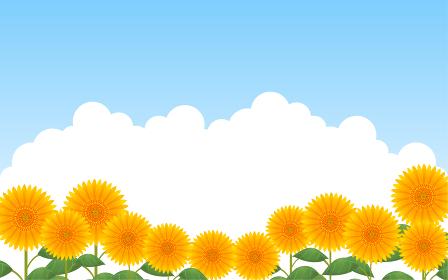 青空を背景にした向日葵畑と入道雲