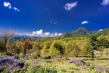 長野県・北横岳 初秋の登山道から眺める蓼科山の風景