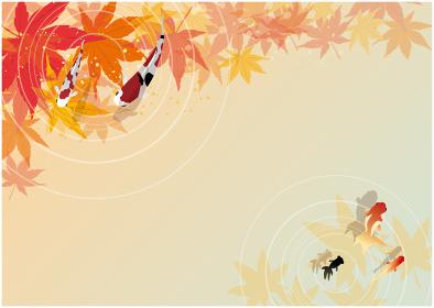 鯉と秋の紅葉背景