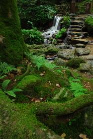 Uriwari waterfall
