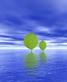 木の葉と水面CG