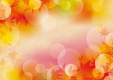 秋の美しい紅葉の背景イラスト