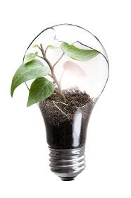 電球と若葉のエコイメージ