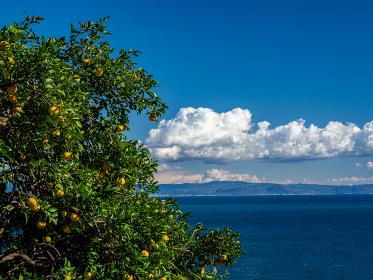 冬晴れの青空が広がる駿河湾の風景 静岡県薩埵峠 12月