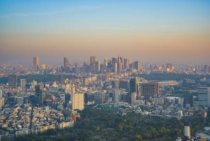 早朝の東京都心