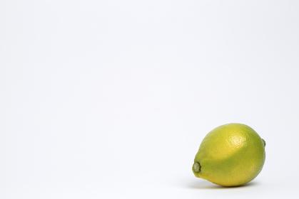 日本産のレモン