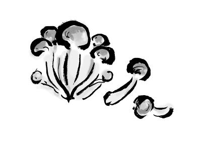 【なめこ】手描き筆描きイラスト素材