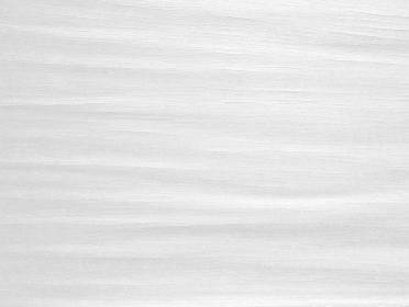 樹皮のテクスチャ ホワイト 1237