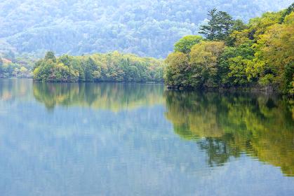 湯ノ湖一周ハイキングコース