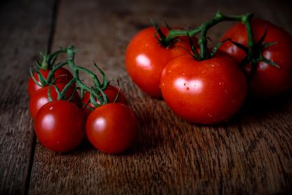 オーガニック農家の新鮮なトマト