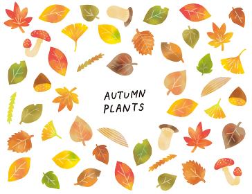 カジュアルなタッチ 秋の落ち葉やキノコのイラストセット
