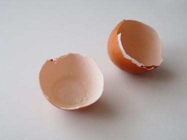 テーブルに転がる卵の殻