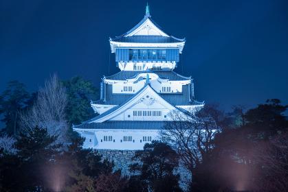 ライトアップされた小倉城