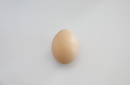 シンプルな背景の卵