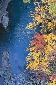 秋の吾妻渓谷
