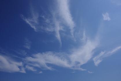 鳥が尾羽をなびかせながら飛んでいるように見えた雲