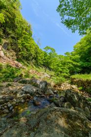 初夏の神角寺渓谷(大分県)