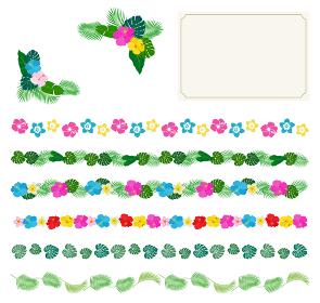 南国の花と植物 ハガキ フレームセット