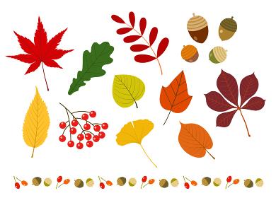 秋の紅葉と木ノ実のボーダーセット