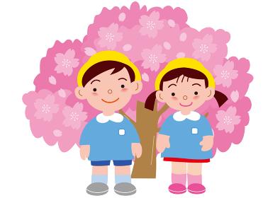 満開の桜と安全帽をかぶった園児
