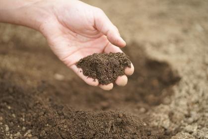 畑の土 農業の土 野菜つくりの始まり