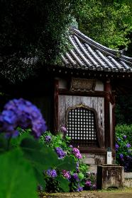 矢田寺 (奈良県大和郡山市 2013/07/03撮影)