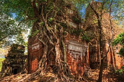 カンボジア・コーケー遺跡群 プラサット・プラムの風景