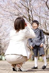 桜の下で息子の写真を撮る母親