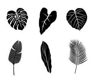 熱帯植物 イラストアイコンセット