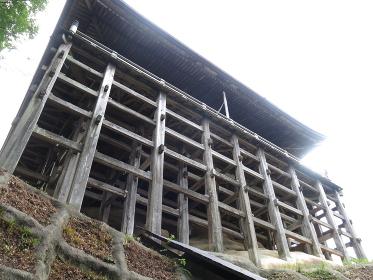笠森寺観音堂(笠森観音)の林立する柱(南側 堂内入口・本尊正面側)