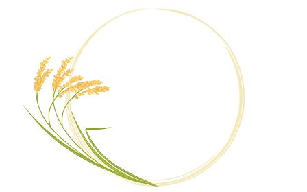 実った稲と丸フレームのイラスト