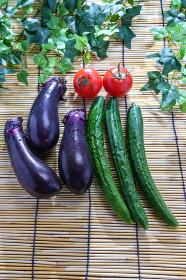 夏野菜 (ナス、ミニトマト、きゅうり)