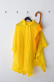 Raincoat and umbrella hanging on hook