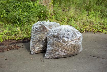 刈られた雑草の袋詰め 5805