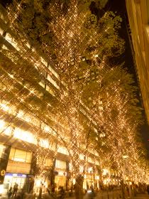 丸の内仲通りのイルミネーション 東京都