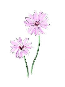 手描きイラスト素材 植物 花, ガーベラ, ピンク
