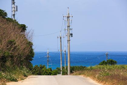 日本最南端の波照間島・ニシ浜へ向かう道