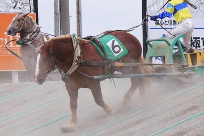 北海道 帯広市 ばんえい競馬