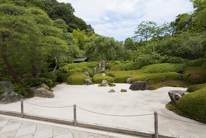鎌倉 明月院の石庭