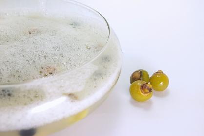 ムクロジの実を揉んで作った泡とムクロジの実