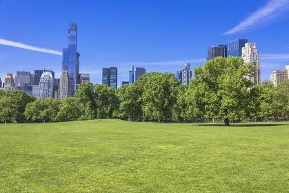 ニューヨーク 新緑のセントラルパーク