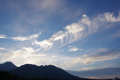 巻き毛のような不思議な形の雲