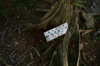 仙丈ケ岳の風景