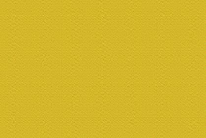 カラーパターン343