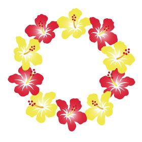 南国の花、ハイビスカスの花輪。背景装飾、丸型