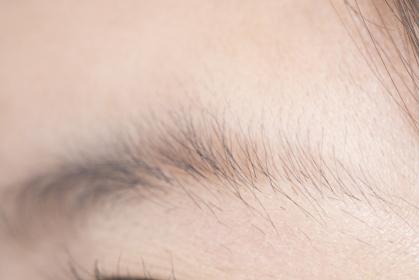女性の眉毛