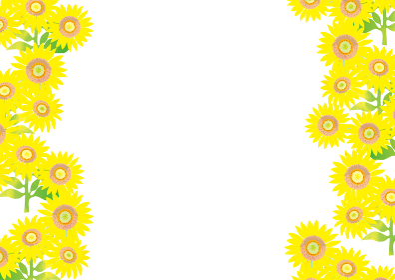 元気な夏の向日葵の背景イラスト