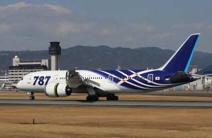 日本に初導入時のボーイング787特別塗装機