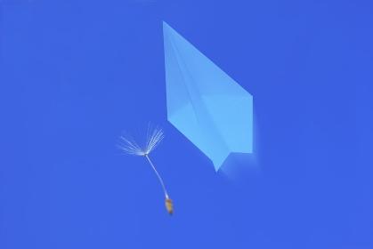 紙飛行機とタンポポ