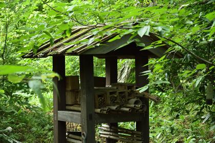虫の家(insect house, insect hotel, bug house)